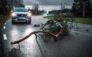 Volvo osobné a nákladné autá prepojí. Kvôli bezpečnosti